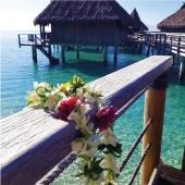 Polinésia Francesa com Moorea